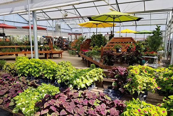 Houston Garden Center