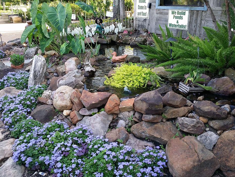 Just Add Water Warren S Southern Gardens Kingwood Tx