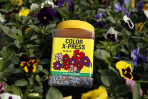 Color X-Press