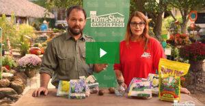 Planting Bulbs Indoors Video