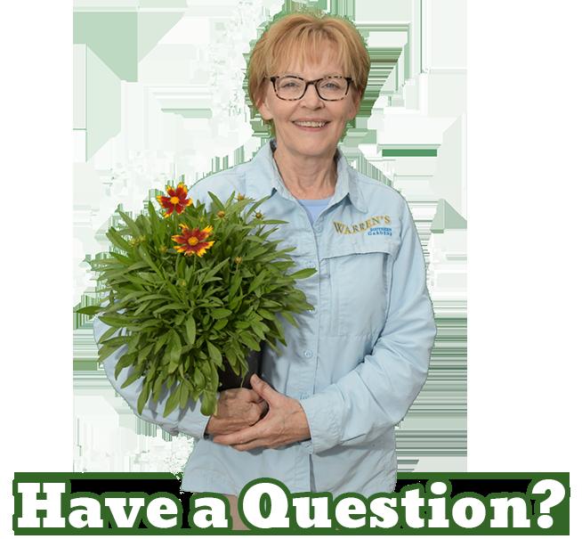 Warren's Southern Gardens Expert Joy